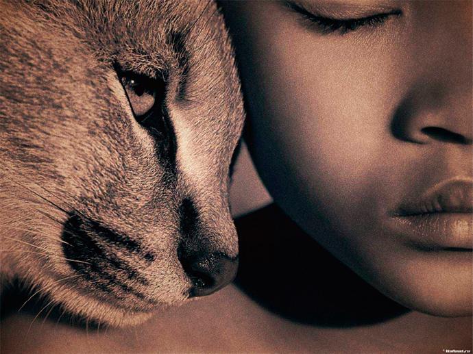 защита прав животных психология